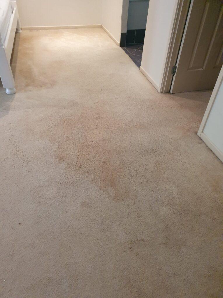 Carpet Cleaning Larapinta Bedroom Before